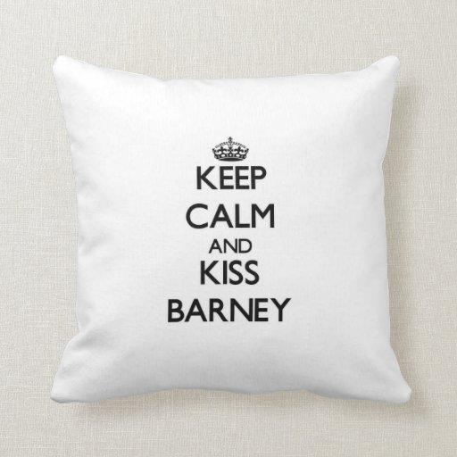 Mantenga tranquilo y beso Barney Almohada
