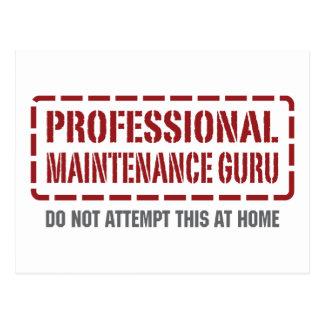 Mantenimiento profesional Guru Postal