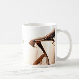 mantis1_mug taza básica blanca