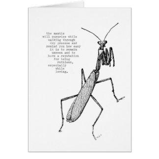 mantis card