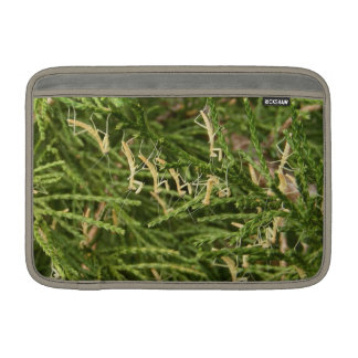 Mantis Nest ~ MacBook Air Sleeve