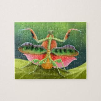 Mantis religiosa africana colorida en rompecabezas