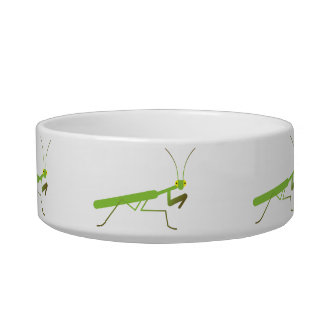 Mantis religiosa tazones para comida para gato