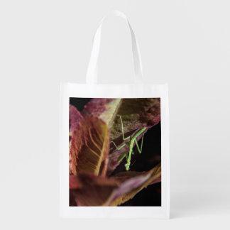 Mantis religiosa del bebé en bolso reutilizable de bolsa para la compra