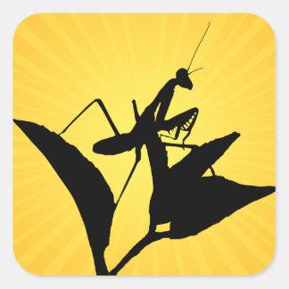 Mantis religiosa en una ramita con un Starburst Pegatina Cuadrada