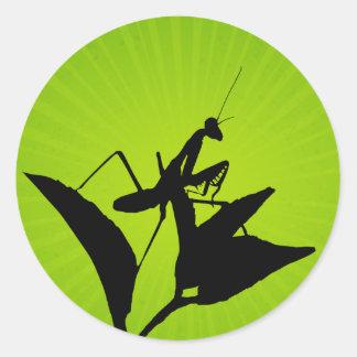 Mantis religiosa en una ramita con un Starburst Pegatina Redonda