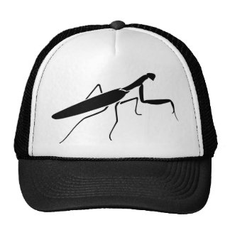 Mantis religiosa gorra