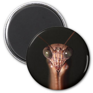 mantis religiosa imán redondo 5 cm