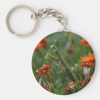 Mantis religiosa llavero redondo tipo pin