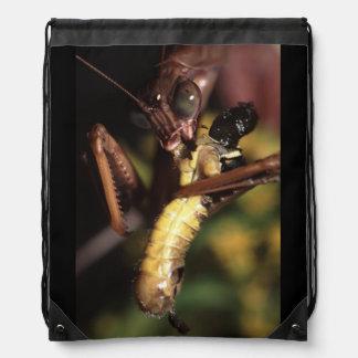 mantis religiosa mochila