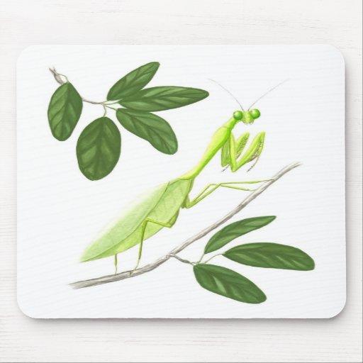 Mantis religiosa Mousepad Tapete De Ratón