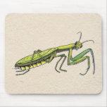 Mantis religiosa tapete de raton