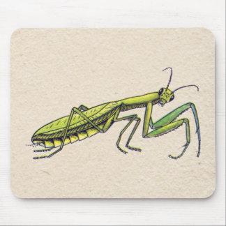 Mantis religiosa tapetes de ratones