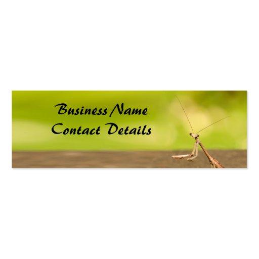 Mantis religiosa tarjetas de visita