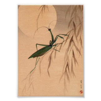 Mantis religiosa y los 1800s japoneses del arte C.