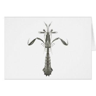Mantis Shrimp Card