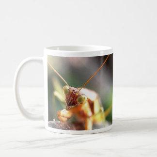 Mantis Up Close Coffee Mug