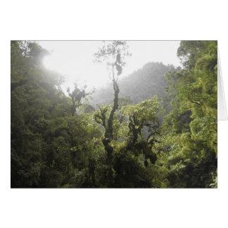 Manu National Park Card