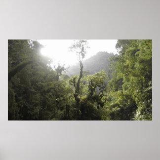 Manu National Park Poster