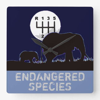 MANUAL - Endangered Square Wall Clock