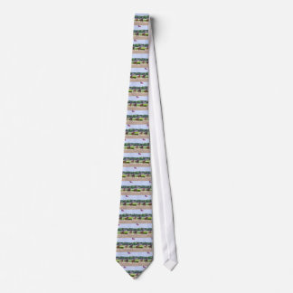 """Manuel Franco guides """"From The Point to Victory Neck Tie"""