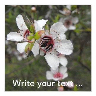 Manuka Blossom Card