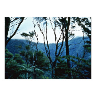 Manuka Scrub And Mist, Moehau Mountain 5x7 Paper Invitation Card