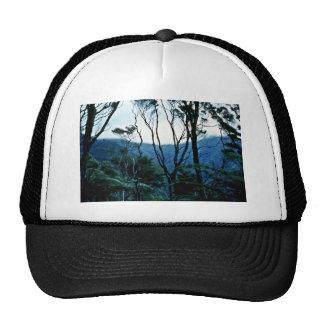 Manuka Scrub And Mist, Moehau Mountain Hats