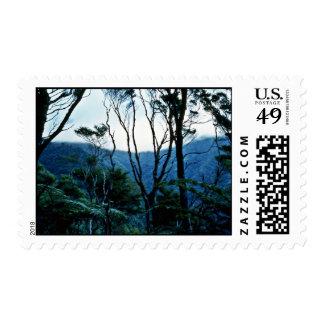 Manuka Scrub And Mist, Moehau Mountain Postage
