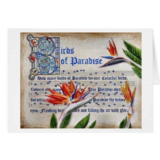 Manuscrito de las aves del paraíso tarjeta de felicitación