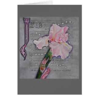Manuscrito rosado del iris felicitación