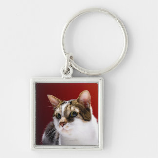 Manx cat Silver-Colored square keychain
