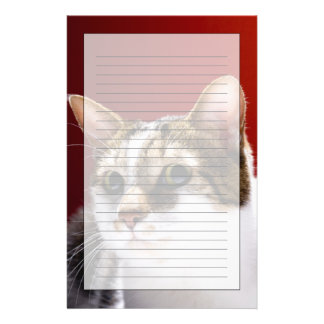 Manx cat personalized stationery