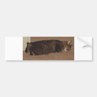 manx sleeping.png bumper sticker