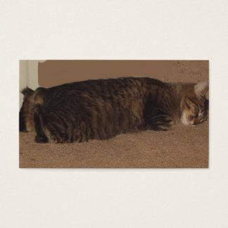 manx sleeping.png business card