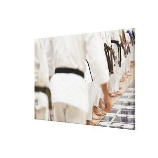 Many black belts canvas print
