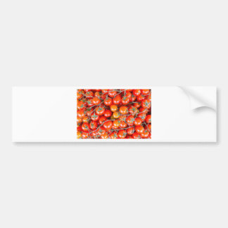 Many bunches of red vine tomatoes bumper sticker