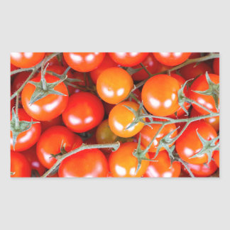 Many bunches of red vine tomatoes rectangular sticker