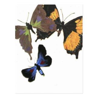 Many Butterflies Postcard