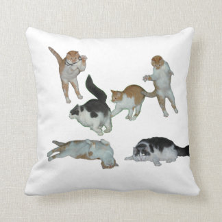 Many Cats Playing Pillow