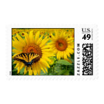 Many Choises Stamp