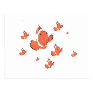 Many Clown Fish Postcard