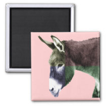 Many Colors Burro - Color Me Wild Animal Lovers Magnet
