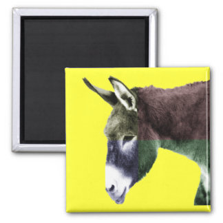 Many Colors Burro Donkey 2 Inch Square Magnet