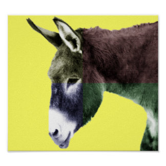 Many Colors Burro Posters