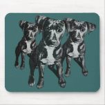 many colours billy three mouse mat