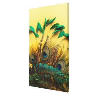 Many different kinds of feathers on a yellow canvas print