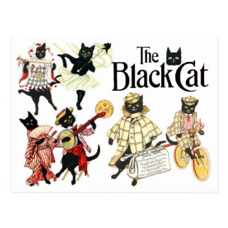 Many Faces of the Black Cat Postcard