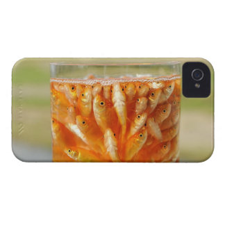 Many goldfish which are in the glass container iPhone 4 cover