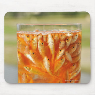 Many goldfish which are in the glass container mouse pad